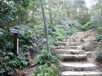 Stairs at the half-way point