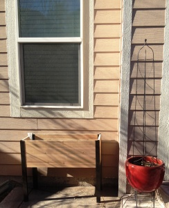 New patio garden and new trellis